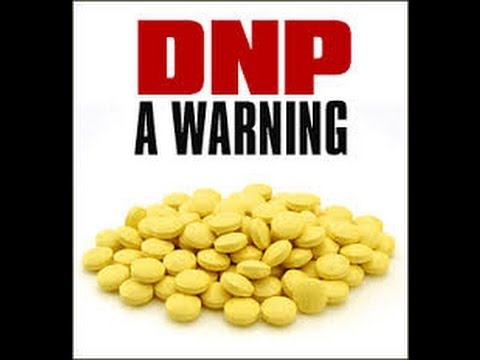 toxic DNP in diet pill